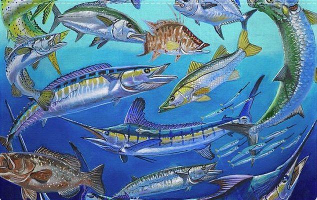 Минимално допустимите размери за риболов - Гърция