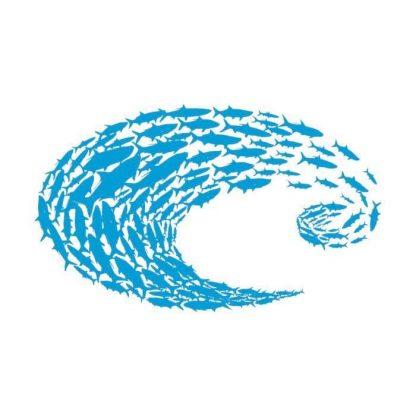 Стикер Decal Costa Blue Logo Schoolin